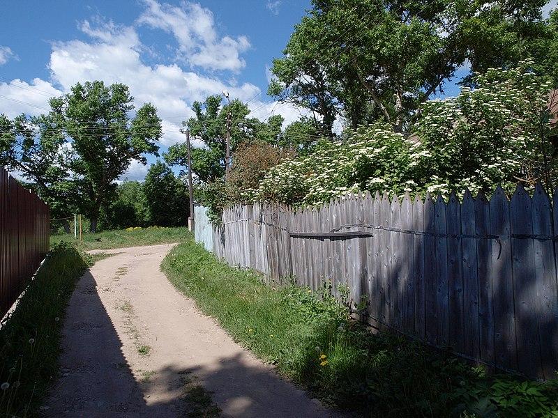 File:Borovsk west side alley 04j.JPG