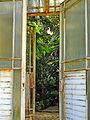 Botanička bašta Jevremovac, Beograd - ulaz u staklenu baštu 01.jpg