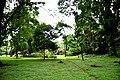 Botanic garden limbe76.jpg