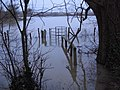Botley across flooded field - geograph.org.uk - 309112.jpg