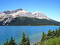 Bow Lake - panoramio - Jack Borno.jpg