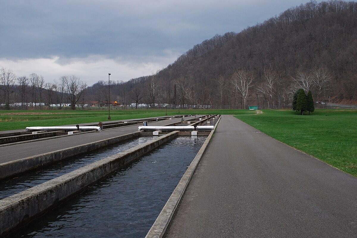 Raceway (aquaculture) - Wikipedia