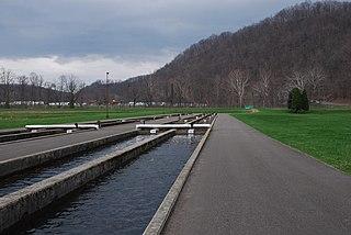 Raceway (aquaculture)