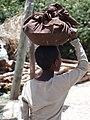 Boy Bearing Bundle - Axum (Aksum) - Ethiopia (8702260030).jpg