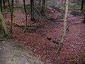 Braine-le-Comte, Belgium - panoramio (8).jpg