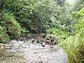 Breakfast River, Boiling Lake Trail, Dominica.jpg