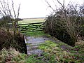 Bridge into a pasture - geograph.org.uk - 661231.jpg