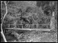 Bridge over a stream at Anawhata ATLIB 191062.png