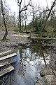 Bridges in Stony Cliffe Wood - geograph.org.uk - 738141.jpg