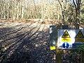 Bridleway leads into Mereworth Woods - geograph.org.uk - 1200088.jpg