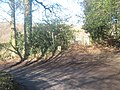 Bridleway on the bend on Farnham Lane - geograph.org.uk - 1733758.jpg
