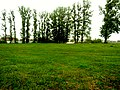 Brody, Lviv Oblast, Ukraine - panoramio (260).jpg