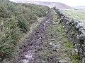 Broughton - Skirling Path - geograph.org.uk - 724408.jpg
