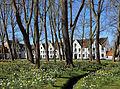 Brugge Begijnhof R01.jpg