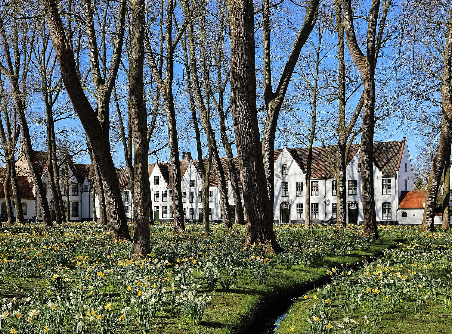 Brugge Begijnhof R01