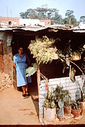 Bucaramanga-Colombia-slums-1982-1989-IHS-57-01-Shed-corrugated-iron.jpeg