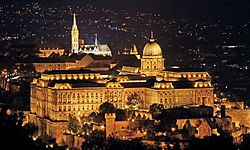 Buda Castle with Matthias Church (Ariel,night).jpg