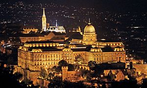 Buda Castle - Buda Castle aerial view with Matthias Church