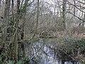 Bullington - The River Dever - geograph.org.uk - 670946.jpg
