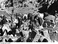 Bundesarchiv Bild 135-S-12-26-30, Tibetexpedition, Beladen der Fähren.jpg