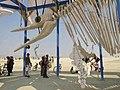 Burning Man 2013 Ichthyosaur Mobile Puppet (10227108853).jpg