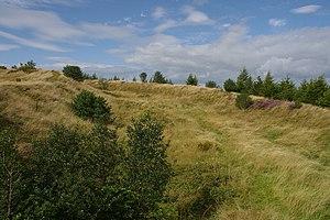 Bury Ditches MMB 03