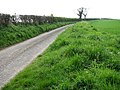 Byroad from Edgefield to the B1354 (Briston Road) - geograph.org.uk - 787000.jpg