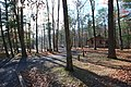CCC built cabins at Douthat State Park cabin 9 (28445253089).jpg