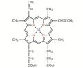 CNX Chem 19 02 heme.png
