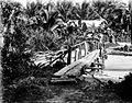 COLLECTIE TROPENMUSEUM Twee mannen bekijken malaria-haarden aan de kust van het hoofdeiland van Enggano Benkoelen Sumatra TMnr 10006741.jpg