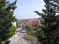 Cañada de Canara.jpg