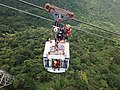 Cable Car Rescue Training.jpg