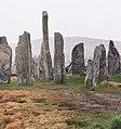 Callanish - geograph.org.uk - 333580.jpg