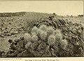 Campfires on desert and lava (1908) (14770031721).jpg