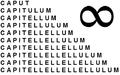 Capitellulum.PNG