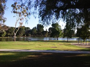 Carbon Canyon Regional Park - The lake that is found in the center of the park.