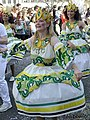 Carnaval Strasbourg (73377477).jpeg
