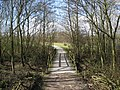 Carsington Water - Path into Millfields Car Park - geograph.org.uk - 1196518.jpg