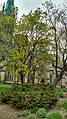 Cathedral Church of St. James Toronto park view.jpg
