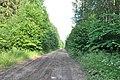 Ceļš, Mālpils pagasts, Mālpils novads, Latvia - panoramio.jpg