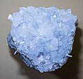 Celestite 03 - Cleveland Museum of Natural History (34675020271).jpg