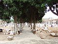 Cementeri municipal (Aldaia) 03.jpg