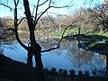Central park newyork.jpeg