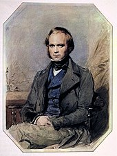 Three quarter length portrait of Charles Darwin aged about 30, with straight brown hair receding from his high forehead and long side-whiskers, smiling quietly, in wide lapelled jacket, waistcoat and high collar with cravat.
