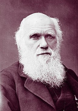 Charles Darwin photograph by Herbert Rose Barraud, 1881 2