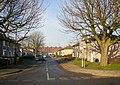 Chestnut Grove, Lancaster - geograph.org.uk - 645300.jpg