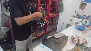 Animal slaughter - Chicken slaughter at the market in Indonesia