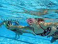 Children speed through the water in the 20-yard freestlye race at the base's Marine Corps Community Services' annual Splashin' Olympics at Camp Pendleton's 13-Area pool, Aug 110804-M-MC155-001.jpg