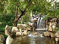 Chinese Garden in Sydney (23).jpg
