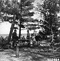 Chippewa National Forest - Social - 7.jpg
